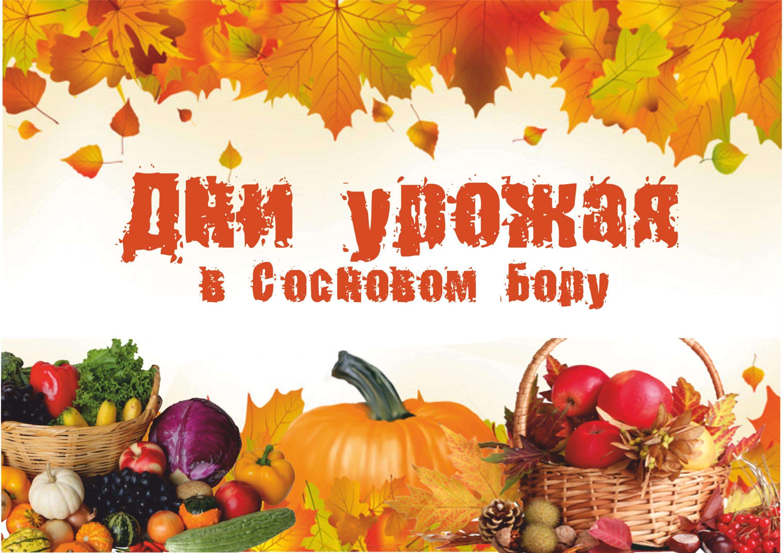 Праздник урожая Осенины 2018 поздравления в прозе 32